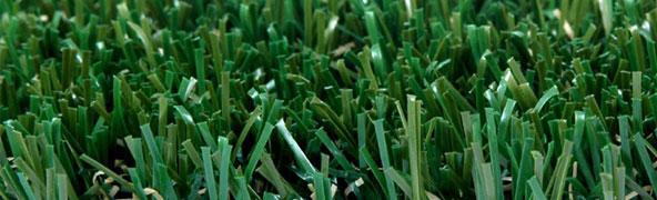 Pasto para Jardín